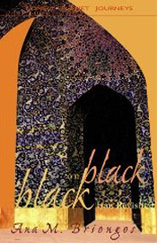 Black on Black. Iran revisited. Book in English